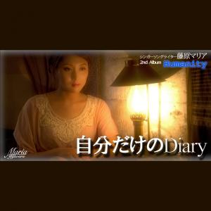 jibun_dakeno_diary