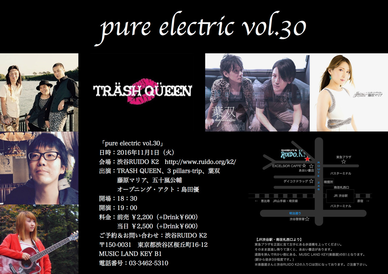 pure-electric-vol-30-%e3%83%95%e3%83%a9%e3%82%a4%e3%83%a4%e3%83%bc